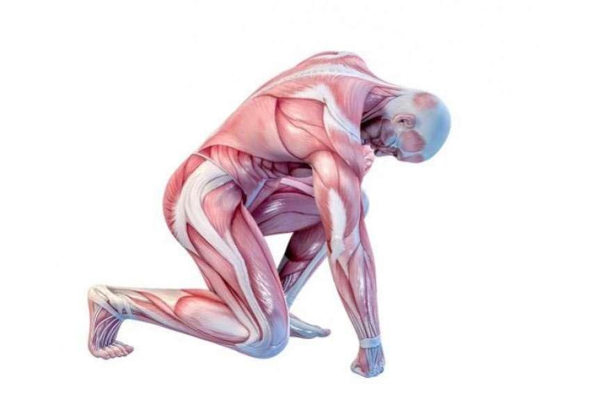 Löst Sport Muskelschmerzen aus?