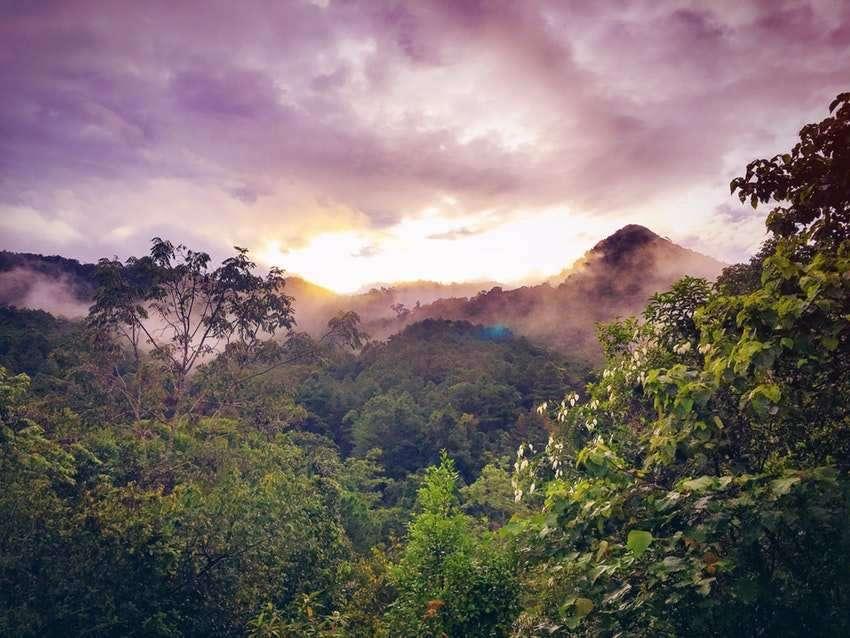 Amöbiasis: Befall mit Amöben nach Reisen in tropische Länder