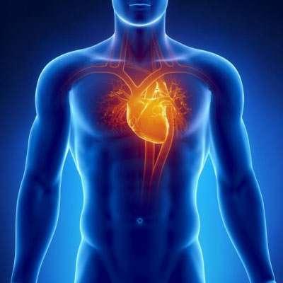 Herzmuskelentzündung (Myokarditis): Symptome (Teil 3)