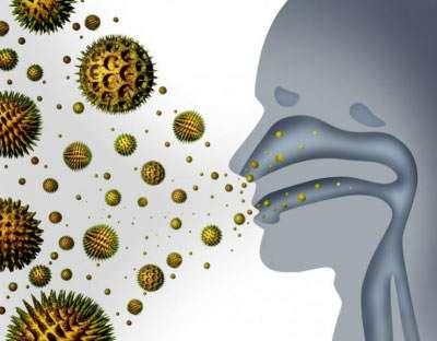 Heuschnupfen (Pollenallergie): Ursachen