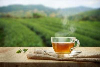 Dauerwach nach Teetrunk